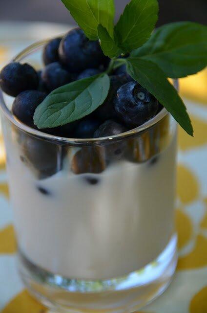 Homemade Coconut-Cashew SCD Yogurt (dairy free, paleo ...